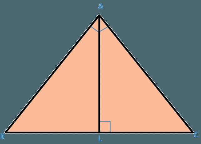 triangles mcq question4